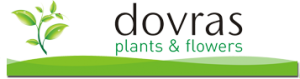 DOVRAS PLANTS AND FLOWERS